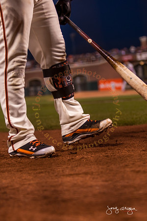 2014 SF Giants-Different Perspectives