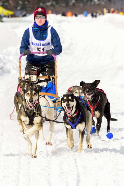 3 Bear Sled Dog Races 2020_17