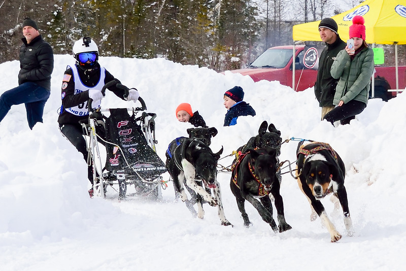 3 Bear Sled Dog Races 2020_18