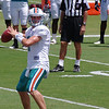 Chad Henne, Quarterback, Miami Dolphins Training Camp, Davie, Florida August 2010