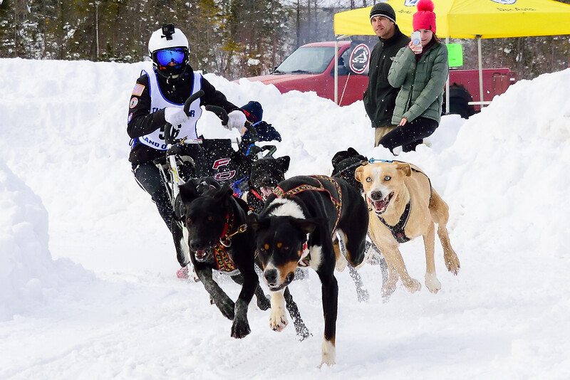 3 Bear Sled Dog Races_19