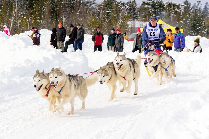 3 Bear Sled Dog Races 2020_23