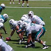 Miami Dolphins Training Camp, Davie, Florida August 2010