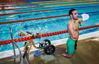 Dolphins and Paralympics swim teams training at Long Tan Pool.