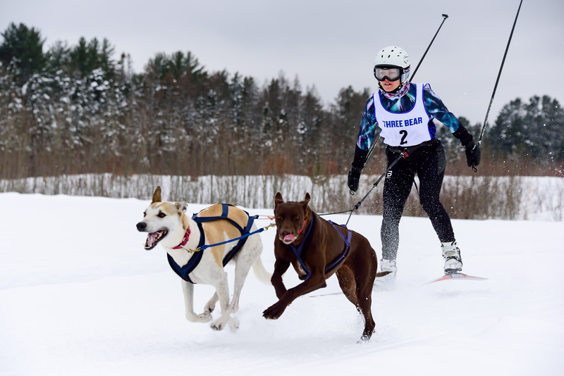 3 Bear Sled Dog Races 2020_03