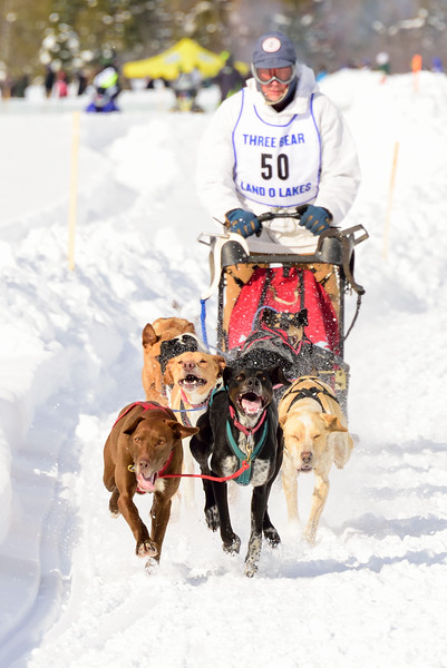 3 Bear Sled Dog Races 2020_15