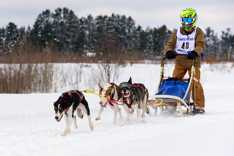 3 Bear Sled Dog Races 2020_13