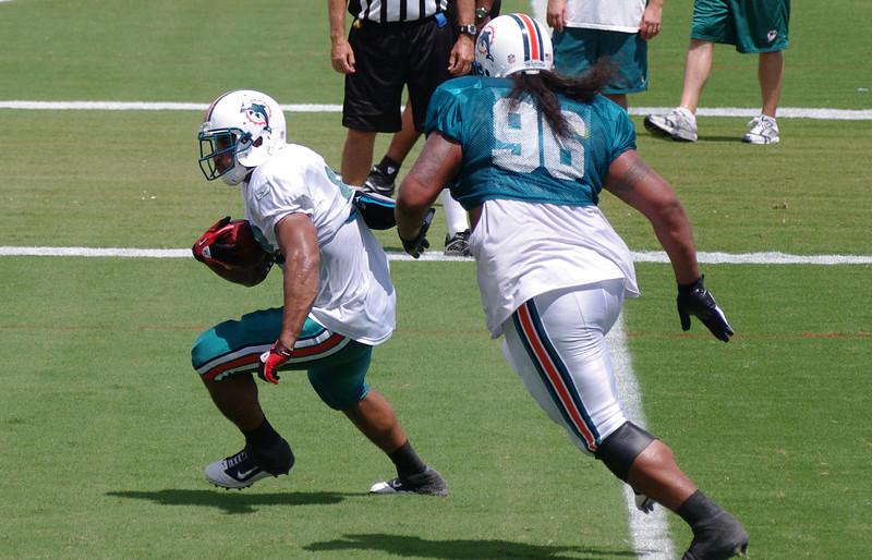 Lex Hilliard, Running Back, Miami Dolphins Training Camp, Davie, Florida August 2010