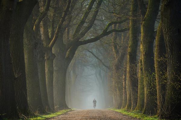 Moody spring road