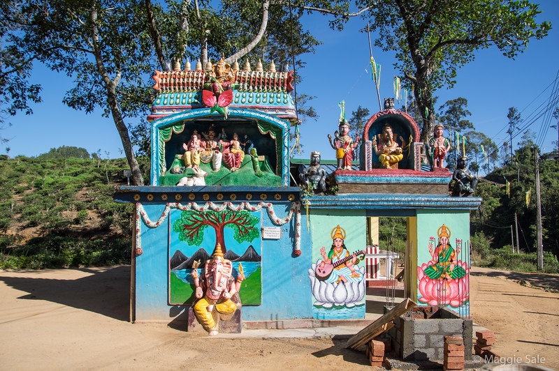 A roadside Hindu temple. The tea workers are mostly Tamils who are Hindus.