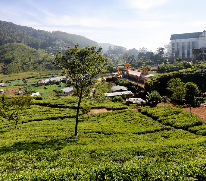 La route Nurawa Eliya et Kandy