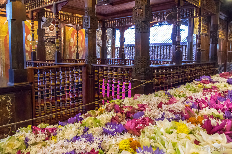 Flowers left by temple visitors at the shrine. The tooth is kept behind the coloured panels and nobody sees it. It has been there since the 16th C but was brought from India in the 4th C.