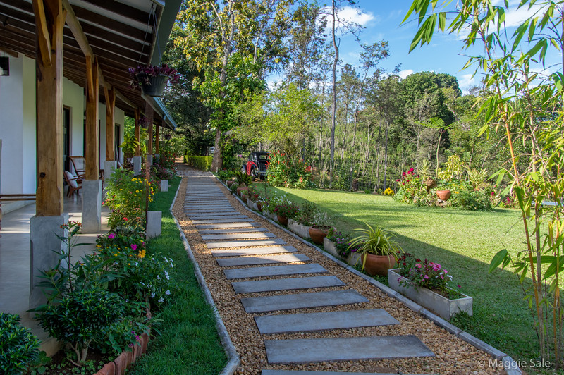 Lovely gardens at our next hotel near Bandarawela - also a tea plantation.