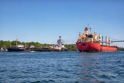 Federal Baltic 9664 EDIT LOGO