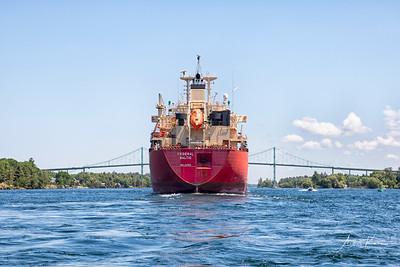 Federal Baltic 9655 EDIT LOGO
