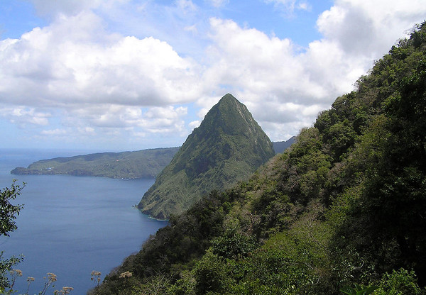 From along the trail through the tropical forest, along the slope of Gros Piton - to the southern slope of Petit Piton - and the distal Grand Caille Point.