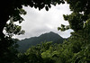 Mt. Gimie - the highest point on St. Lucia, at 3,117 ft. (950 m), and surrounded by tropical forests