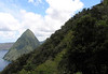From along the tropical forest slope of Gros Piton - to the southern slope of Petit Piton - and the distal Grand Caille Point ed