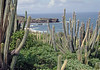 Beyond the spines of the cacti - to Pointe du Cap (Tip of Cape) - northern most point on the island