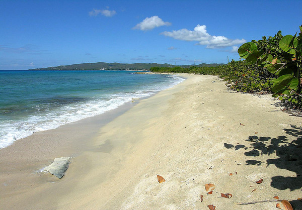 Sandy Point National Wildlife Refuge (sea turtle nesting, mainly the massive leatherbacks) - a 3 mi. (5 km) long beach (the longest in the U.S. Virgin Islands), located at the very southwestern end of the island