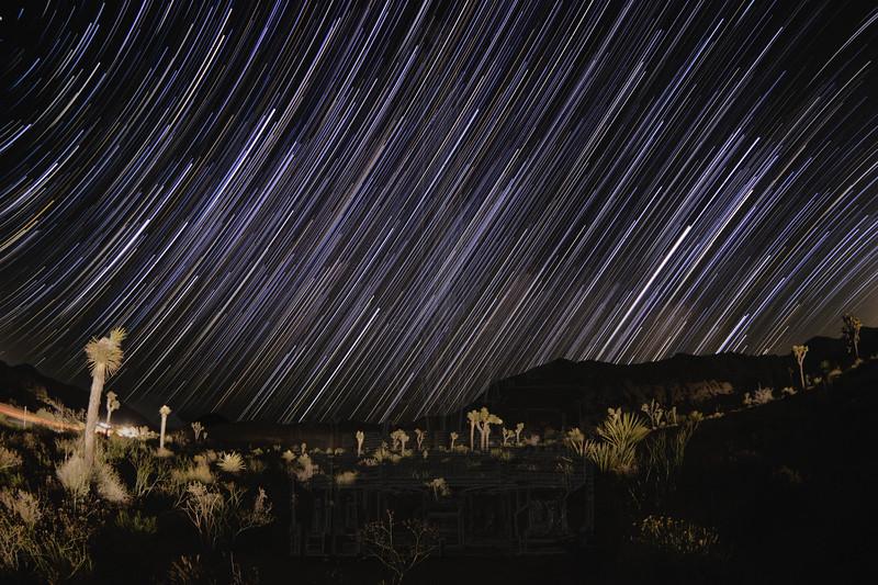 Star Trail in Joshua Tree