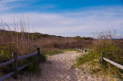 Nauset Coast Guard Beach - Cape Cod