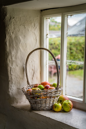Apples on a Sill