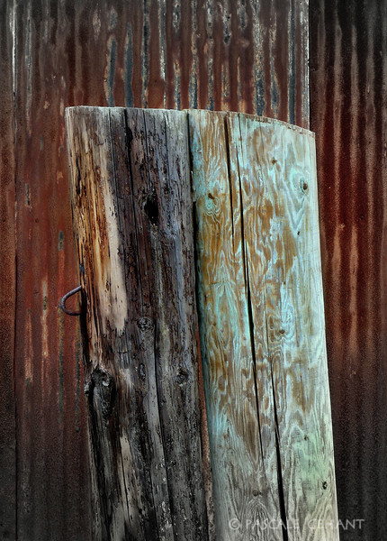 Wood post portrait
