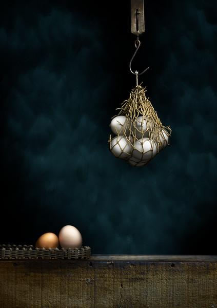Egg Trap