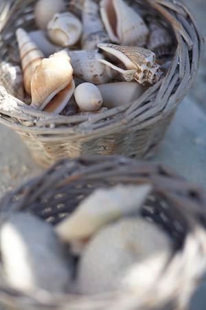 Sea shells in baskets