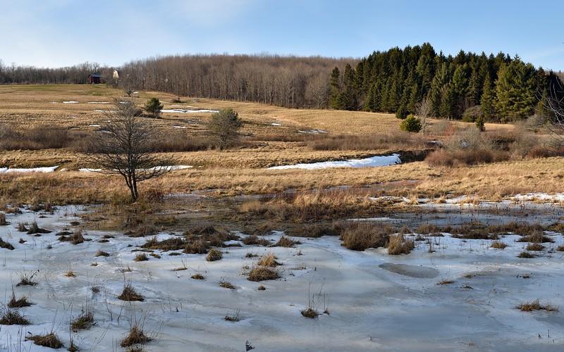 Near Keeney Swamp.  Nikon D750 and 24-70 f/2.8G lens (February 2016).