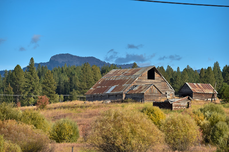 8945:  Old Barn South of McCall
