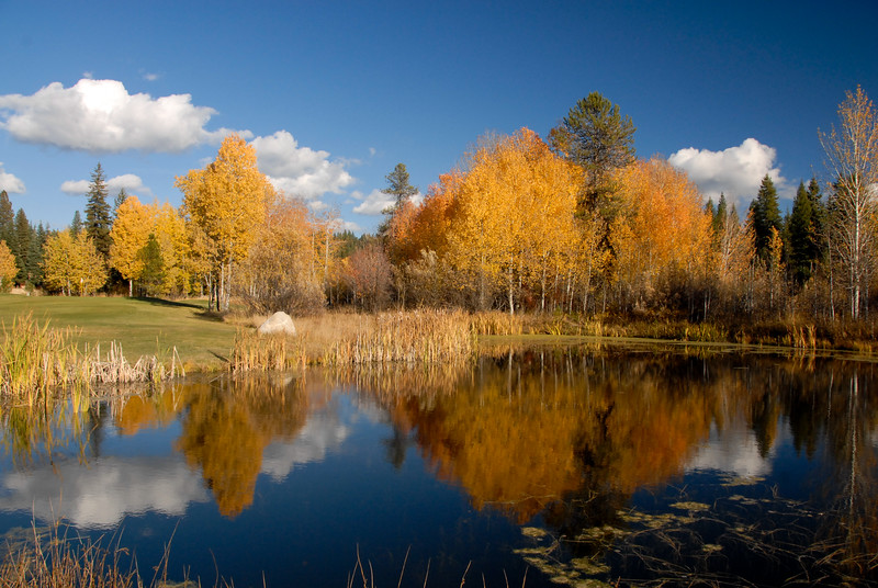 4858:  Fall at McCall Golf Course