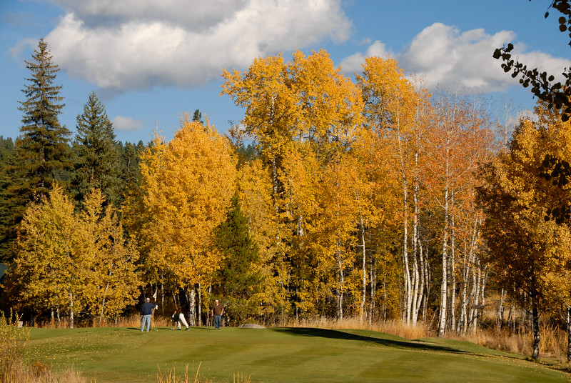 4856:  Fall at McCall Golf Course