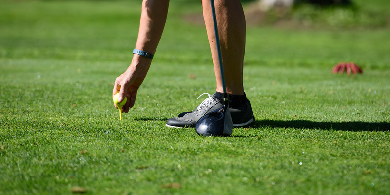 2721: Golfer at McCall Golf Course