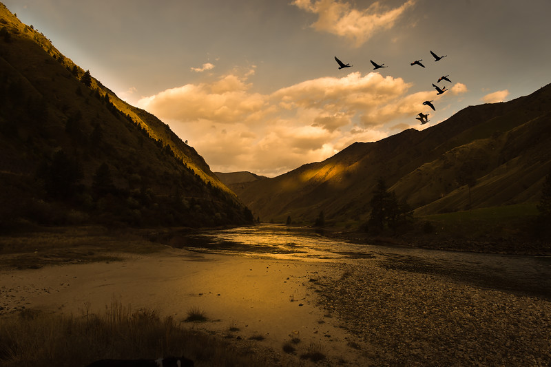 7596:  Sunset on the Salmon River