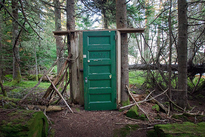 Green Door in the Forest