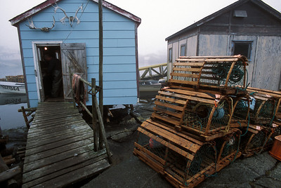 Fisherman, hut and old wooden lobster traps on the tiny outport village of Grand Bruit, Newfoundland, Canada