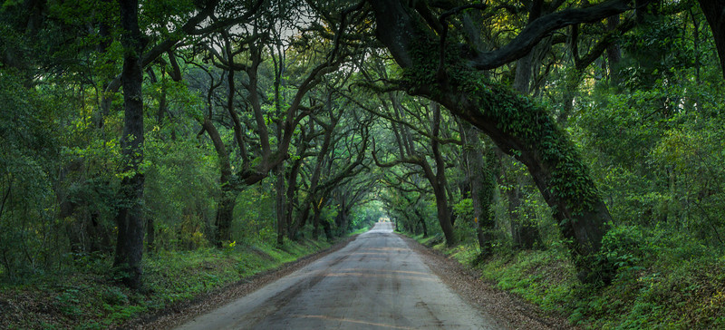 Lonely Road in South Carolina