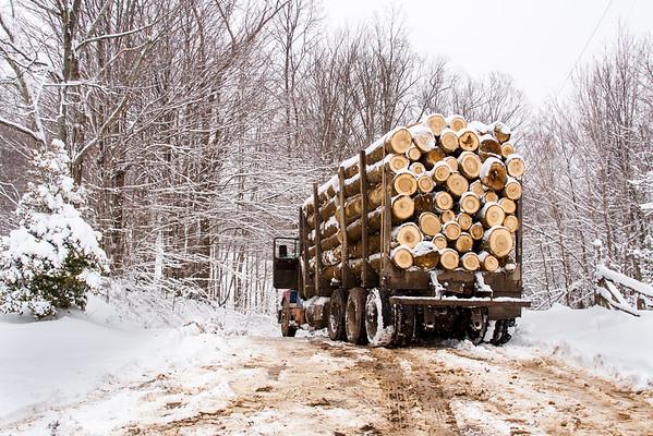 Logging Truck in Winter