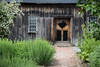 Garden Shed Door
