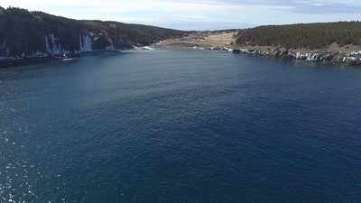 Middle Cove drone-20160325-0004