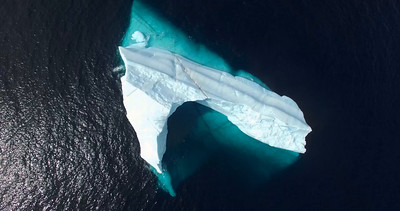 Bay Bulls iceberg drone-20160524-22