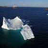 Bay Bulls iceberg drone-20160529-27