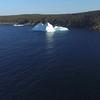 Bay Bulls iceberg drone-20160529-1