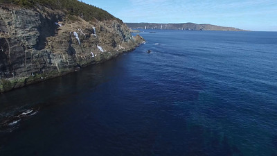 Middle Cove drone-20160325-0007_1