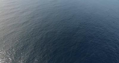Bay Bulls iceberg drone-20160524-20