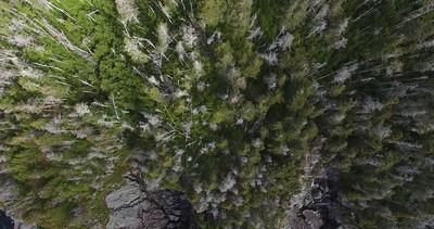 Tors Cove drone-20160604-26