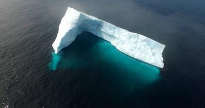 Bay Bulls iceberg drone-20160524-16