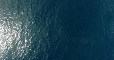 Bay Bulls iceberg drone-20160524-21